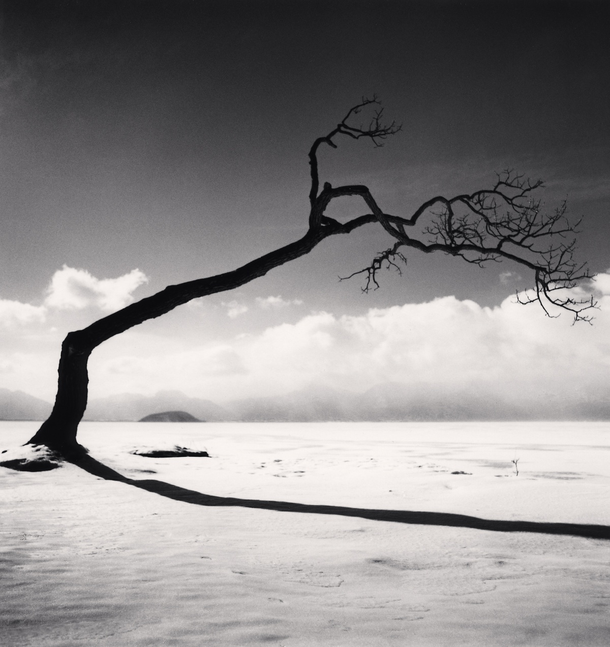 Michael Kenna Kussharo Lake Tree, Study 10, Kotan, Hokkaido, Japan 2005 Sepia Toned Silver Gelatin Print From An Edition Of 45 8 x 8 Inches